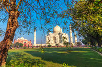 Taj Mahal, garden view, Agra, Uttar Pradesh, India