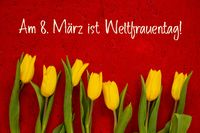 Yellow Tulip Flowers, Red Background, Weltfrauentag Means Womens Day