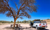 Picknickplatz, Kgalagadi-Transfrontier-Nationalpark, Südafrika | picnic spot, Kgalagadi Transfrontier National Park, South Africa
