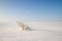 101221-winter-falkenwalde-01.jpg