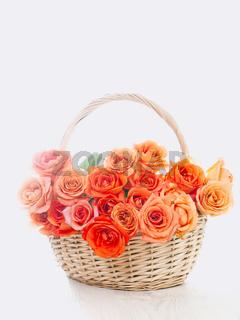 Wicker basket with orange roses