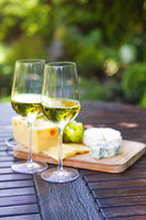 Tasty appetizer for white wine on picnic in garden