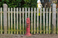 Hydrant with a wooden fence