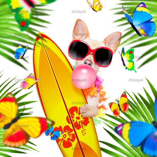 summer paradise vacation surfer dog