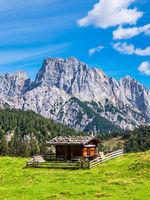 Blick auf die Litzlalm mit Hütte in Österreich