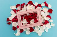 White and red rose petals with pink rustic frame on blue background