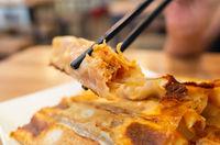 fried dumpling in a restaurant