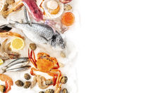 Fish and seafood background with copy space, a design template on a white background. Sea bream, prawns, crab, sardines, squid, shot from the top with a place for text