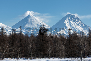Snowy mountain landscape and scenery winter forest on Kamchatka Peninsula