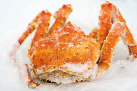 Boiled and frozen wild Red King Crab lies on plastic packaging in refrigerator. Alaskan king crab or Kamchatka crab - expensive marine delicacy