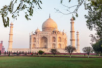Taj Mahal in the park, Agra, Uttar Pradesh, India