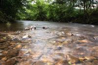 Long exposure of running water in nature
