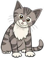 cute tabby cat or kitten cartoon animal character