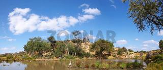 Flusslandschaft im Mapungubwe-Nationalpark, Südafrika, landscape at Mapungubwe National Park, South Africa