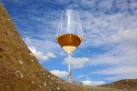 Rose Wein 2.jpg