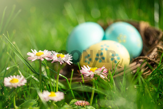 Osternest versteckt im Gras