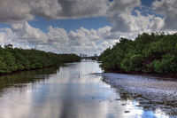 Waterway in Lovers Key State Park surrounded by mangroves