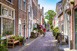 Cozy green street in Haarlem in the Netherlands