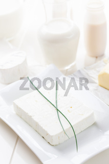 Sheep cheese and other dairy products on white background
