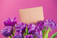 Charming bouquet tulips and greeting card with copyspace