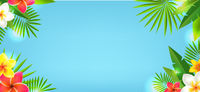 Tropical Leaves And Tropical Flowers With Blue Background