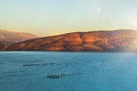 Panorama of mussel farm lagoon.