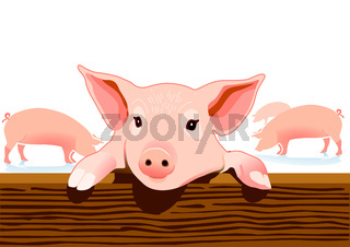 Schweinestall.eps