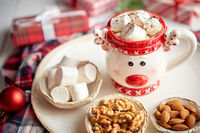 Delicious homemade christmas hot chocolate or cocoa with marshmellows