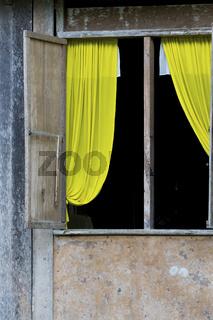 Window with yellow Curtain on Bohol Island