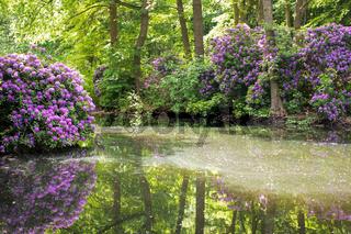Tiergarten 020. Deutschland