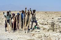 Traditioneller Abbau von Salz am Assale Salzsee. Focolo genannte Afar Salzarbeiter brechen mit hölzernen Brechstangen und Äxten Salzblöcke aus der Salzkruste des Assale Sees