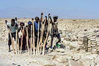 Afar Salzarbeiter brechen Salzblöcke aus der Salzkruste des Assale Sees,Danakil Depression,Äthiopien