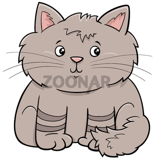 cute fluffy cat or kitten cartoon animal character