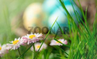 Buntes Osternest im Gras