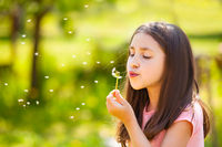 8 years old girl blow on the dandelion, summer time