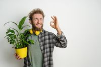 Young bearded man, dressed in plaid shirt, holding yellow flower pot with plant and showing OK gesture isolated on white background. Moving concept