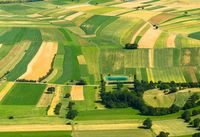 Large Agricultural field aerial view