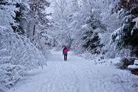 Winterspaziergang, Winter walk,