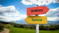 Street Sign Special versus Ordinary