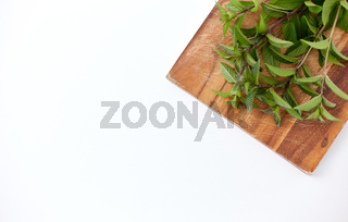 bunch of fresh peppermint on wooden cutting board