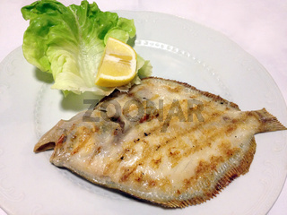 turbot on the plate