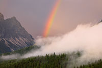 rainbow over forest in fog in mountains