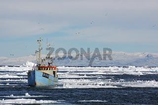 Fischerboot vor Ilulisaat