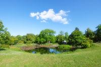 Peaceful pond in Prinz-Emil-Garten, Darmstadt