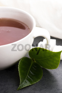 Aromatic Green Tea, fresh tea leaves