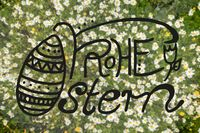 Top View Of Daisy Flower Meadow, Calligraphy Frohe Ostern Means Happy Easter