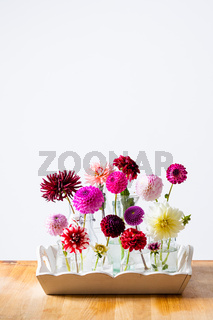 The beautiful dahlias to decorate the room in a vintage style