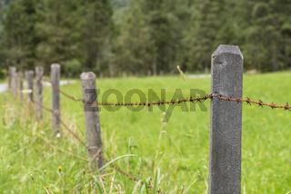 rostiger Stacheldrahtzaun als Begrenzung einer Weide