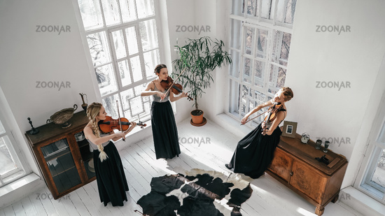 Three Inspired Beautiful Women Giving A Concert Of Classical Music