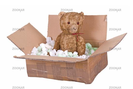 teddy bear in cardboard box